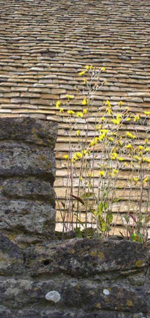 New cotswold stone tile roof